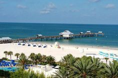 Clearwater beach Florida- Some of the most beautiful beaches in the world...In my own backyard!
