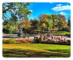 Central Park in New York City during our Autumn visit  #SharontheMoments #GrahamFamRec