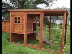 Image result for elevated chicken coop
