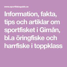 Information, fakta, tips och artiklar om sportfisket i Gimån, bl.a öringfiske och harrfiske i toppklass Tips, Counseling