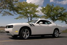 8x12 2009 White Dodge Challenger RT Hemi  Fine Art by MOTORHEAD