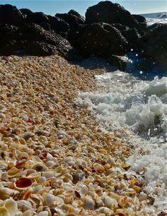 Shells water jetty