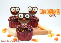 Reeses Owls - Reeses peanut butter cups transformed into cute owls with oreos, eyes, and sunflower seeds #reeses #owls http://www.insidebrucrewlife.com