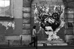 Artist : Monsieur Qui