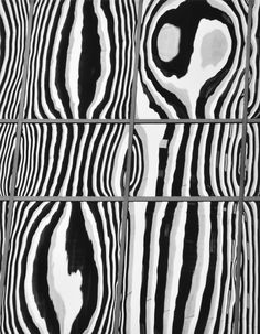 Roger Fremier (American, 1939-2011) Window Reflections