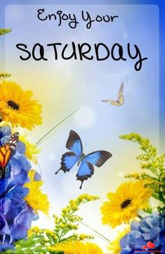 Best Happy Saturday Wishing Greetings Images Pictures - The Wish Post Saturday Morning Quotes, Good Morning Image Quotes, Good Morning Beautiful Images, Good Morning Good Night, Morning Memes, Beautiful Pictures, Happy Saturday Images, Good Saturday, Hello Saturday