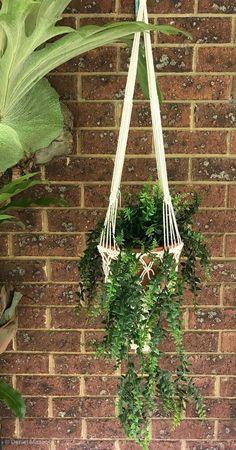 Macrame Plant Hanger Single Cream Cream Colour, Boho    eBay