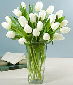 I want real white tulips to replace the fake pink ones on my nightstand.