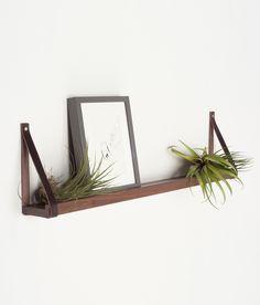 light + ladder shelf