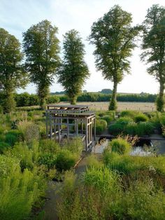 christopher bradley-hole / grass garden at bury court, hampshire