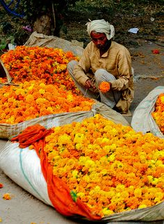 Selling marigolds on the streets of India.