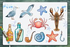 Nautical illustrations by AlexGreenArt on @creativemarket