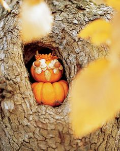 Wise Owl Pumpkin: Pumpkins are thick-skinned, but it's easy to poke through them for a new take on decorating. Here, two miniature pumpkins become a wise owl. Secure pumpkins together with skewers. For eyes, push toothpicks through the tips of two pumpkin seeds, insert in pumpkin, and fan out slightly; repeat several times. A pearberry completes each. To add a chrysanthemum plume, make a hole with a toothpick and insert stem. For the beak, dig out a small opening and wedge in an almond.