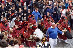 Ducasse de Mons 2015