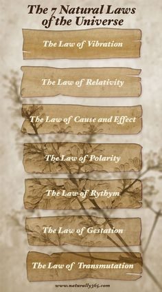 The 7 Natural Laws of the Universe! The Law of Vibration - The Law of Relativity - The Law of Cause and Effect - The Law of Polarity - The Law of Rythym - The Law of Gestation - The Law of Transmutation. Reiki, Mudras, A Course In Miracles, Spirit Science, E Mc2, Nikola Tesla, Quantum Physics, Book Of Shadows, Spiritual Awakening