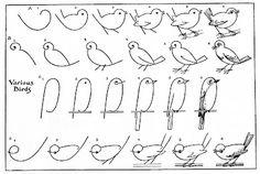 "free printable ""how to draw birds"""