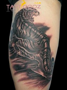 1000 images about tattoo idea on pinterest tribal for Animal finger tattoos