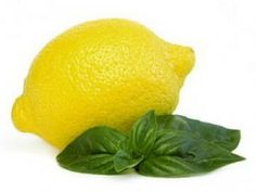 lemon basil dressing recipe