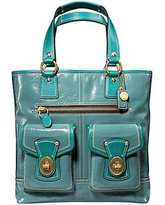 My dream bag, which I don't think u can buy anymore, but I'd kill for
