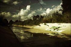 synthetic-landscape