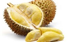 Health Benefits Of The Durian Fruit