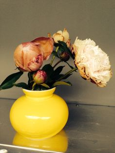 #Love #Roses #DearHenri #Gift #Examination @beauvandenbergh