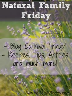 "Natural Family Friday - a Blog Carnival ""linkup"" with featured recipes, tips, articles, and much more!"