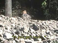 """Destroy Hot Stones"" - http://shogun-assassin.com/2011/05/destroy-hot-stones-lone-wolf-cub-tv-series/"