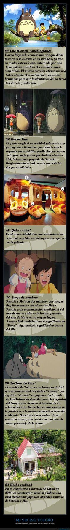 Curiosidades entrañables sobre Mi Vecino Totoro - 6 curiosidades de la película más famosa del estudio Ghibli