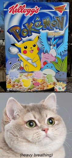 Pokemon Kelloggs cereal  // funny pictures - funny photos - funny images - funny pics - funny quotes - #lol #humor #funnypictures