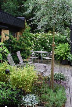 Almbacken: Trädgårdsbesök. Always love the way Maria does her garden.