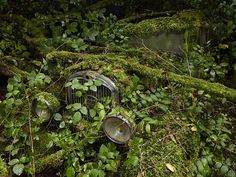 Photographer Peter Lippmann recently completely a project called Paradise Parking.