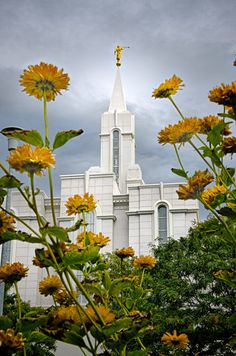 This page shows all currently available images of the lovely Bountiful, Utah LDS Temple. Located in Bountiful, Utah - naturally. Bountiful Temple, Bountiful Utah, Utah Temples, Lds Temples, Lds Temple Pictures, Arise And Shine, Beautiful Pictures, Beautiful Places, Saint Esprit