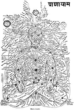 Ancient Sanskrit Diagram of Energy Centres or Chakras and Nadis. - World Mysteries - Cosmic Blueprints - Christine Sterne Pranayama, Kundalini Yoga, Yoga Meditation, Ashtanga Yoga, Yin Yoga, Ayurveda, Sanskrit, Vishuddha Chakra, Anahata Chakra