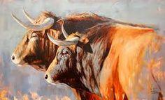 Resultado de imagen para toros de lidia