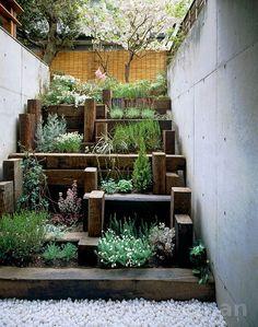 Japanese step-garden