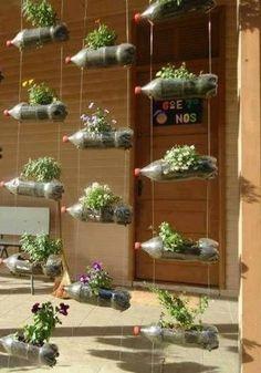 Plastic 2-liter bottles used in vertical garden