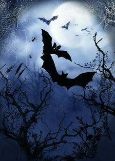 """""""Midnight"""" graphic / illustration by Hariette H. now as a poster, art print or . Retro Halloween, Halloween Town, Halloween Pictures, Halloween Season, Holidays Halloween, Halloween Crafts, Happy Halloween, Halloween Decorations, Halloween Illustration"""