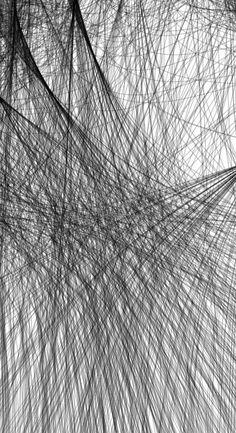 network, detail