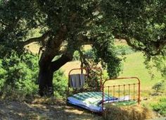 Rent a cool B&B room, take a nap under a cork oak, go #surfing, walk along empty #beaches, enjoy #nature. SW Portugal. More info: http://hideawayportugal.com/modules/property/listing-1101.htm