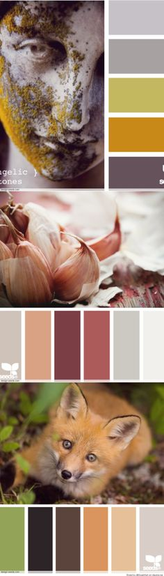 Color Palettes... And you know I'm just pinning for the fox.. HE SO CUTE!