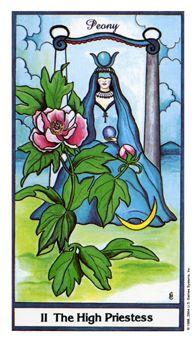 May 22 Tarot Card: The High Priestess (Herbal Tarot deck) Trust your intuition and your heart over your physical mind and body now
