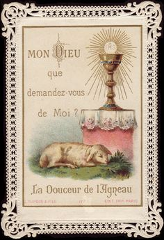 My God, what do you ask of me? The sweetness of the Lamb.