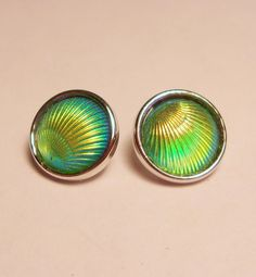 Green Clam Shell Demi Mini Petite Snap Jewelry Snap Cabochon Charm 2/12mm Noosa Style Ginger Snap GingerSnap Snap Earring Snap Button Charm