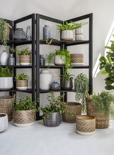 Our Pots & Planters are crafted from high quality materials and will freshen up your space instantly. Artificial plants make beautiful interior decor all year long without the hassle that live plants require. Live Plants, Artificial Plants, Basket Weaving, Color Pop, Colour, My Dream Home, Decorative Accessories, Greenery, Planter Pots