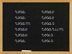 Le latin..le mot Rose ... http://www.vosquestionsdeparents.fr/dossier/639/pourquoi-choisir-le-latin-ou-le-grec/page/3