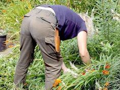 Como eliminar las malas hierbas.