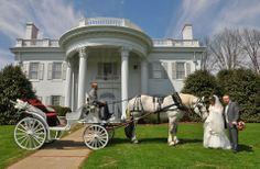 Katelyn Moran & Stephen Commons Allandale mansion wedding 04-11-14 - Photo Tech Photography