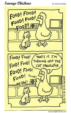 Need cat food? Swing past OK Grocer Danabaai for a wide selection of kitty treats! Crazy Cat Lady, Crazy Cats, Funny Cats, Funny Animals, Savage Chickens, Chicken Humor, Cat Treats, All About Cats, Liking Someone