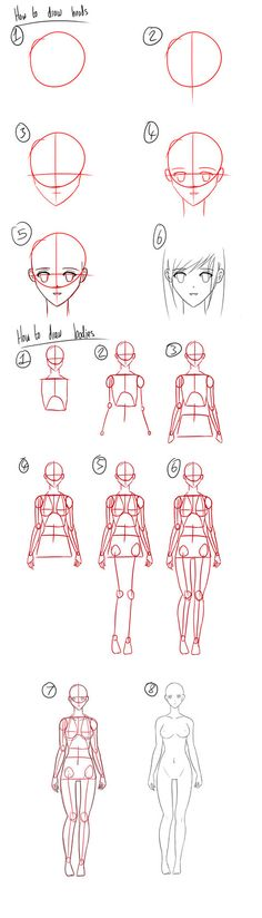 Tutorial - How to Draw Anime Heads/Female Bodies by Micky-K on DeviantArt